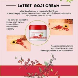 crema-facial-goji-retinol-vitaminas